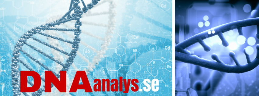 DNA Analys