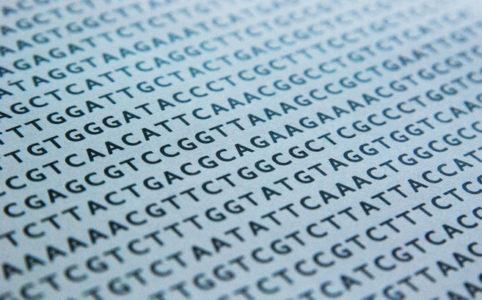 DNA sekvens